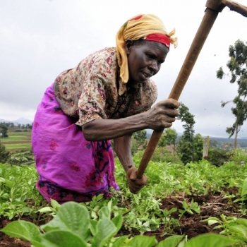 Women's Role in Achieving a Food Secured Africa